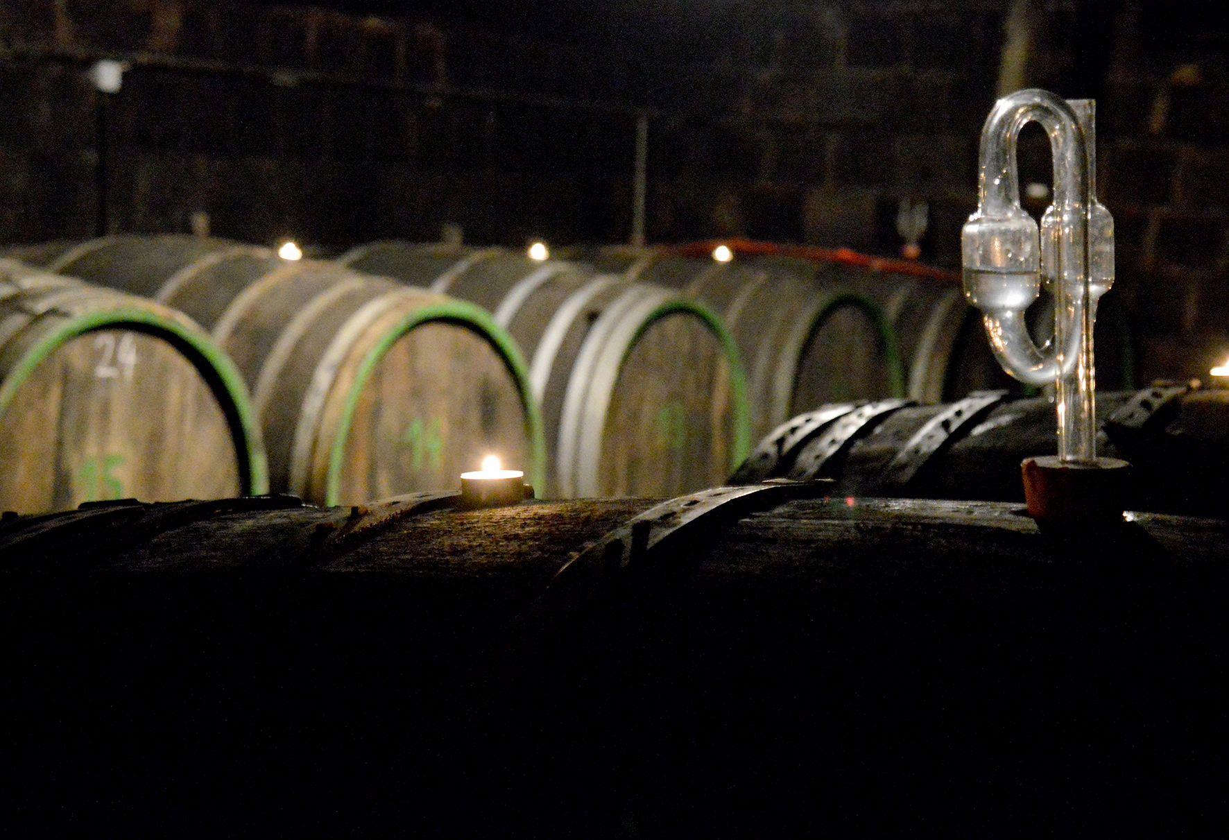 Traditionelle Weinbereitung im Eichenholzfasskeller